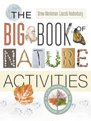 cover image of The Big Book of Nature Activities