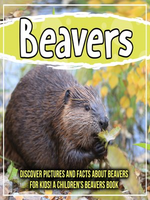 cover image of Beavers