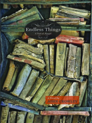 cover image of Endless Things