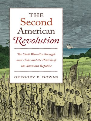 cover image of The Second American Revolution