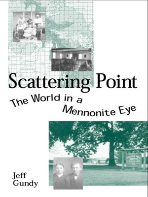 cover image of Scattering Point