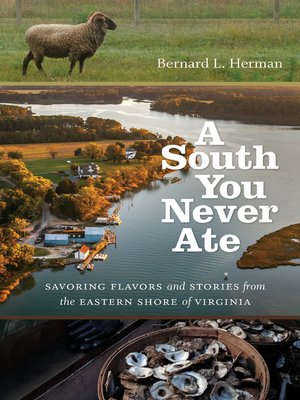 cover image of A South You Never Ate