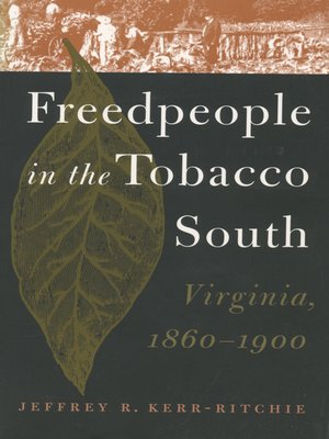 cover image of Freedpeople in the Tobacco South