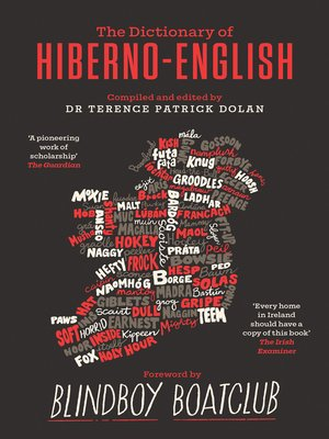 cover image of A Dictionary of Hiberno-English