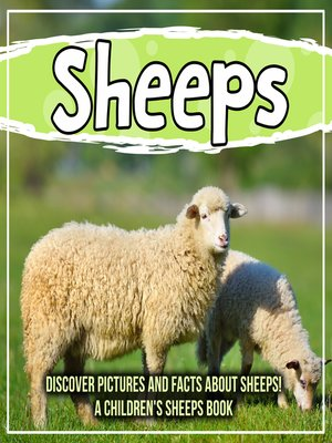 cover image of Sheeps