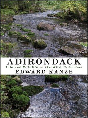 cover image of Adirondack