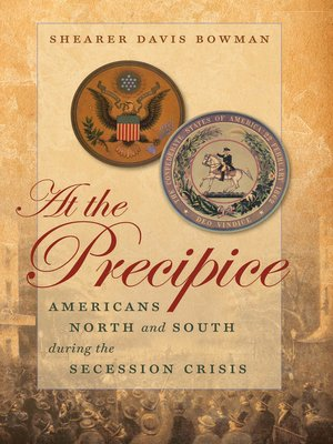 cover image of At the Precipice
