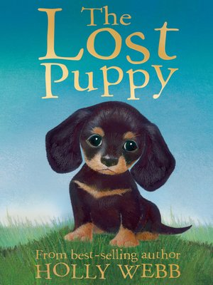 cover image of The Lost Puppy