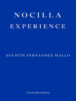 cover image of Nocilla Experience