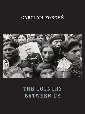 cover image of The Country Between Us