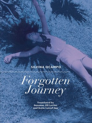 cover image of Forgotten Journey