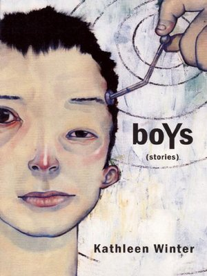 cover image of boYs