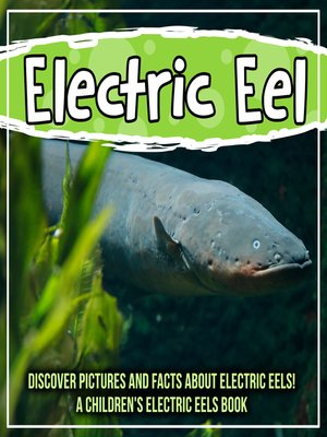 cover image of Electric Eel