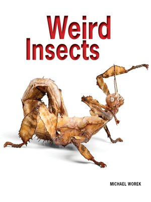 cover image of Weird Insects