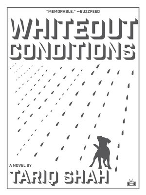 cover image of Whiteout Conditions