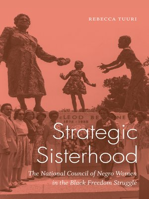 cover image of Strategic Sisterhood