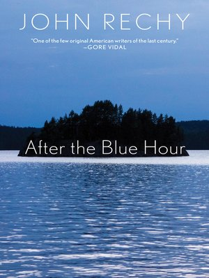 cover image of After the Blue Hour