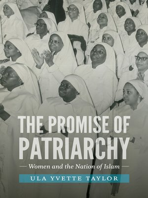 cover image of The Promise of Patriarchy