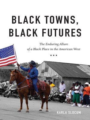 cover image of Black Towns, Black Futures
