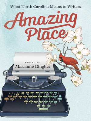 cover image of Amazing Place