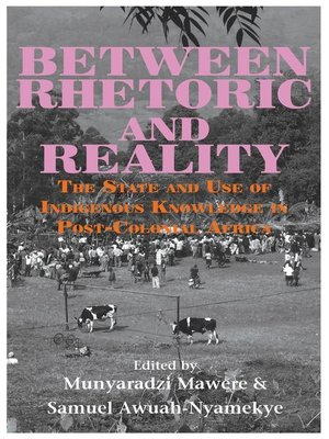 cover image of Between Rhetoric and Reality