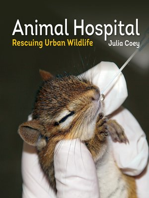 cover image of Animal Hospital