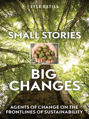 cover image of Small Stories, Big Changes