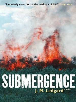 cover image of Submergence