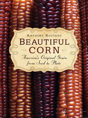 cover image of Beautiful Corn