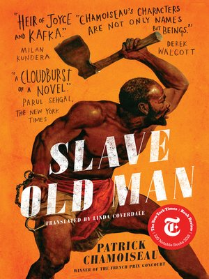 cover image of Slave Old Man