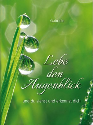 cover image of Lebe den Augenblick