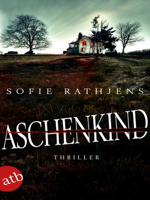 cover image of Aschenkind
