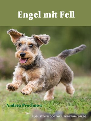 cover image of Engel mit Fell