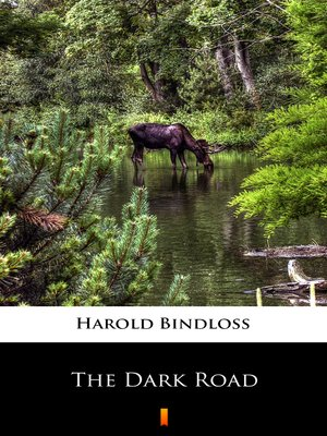 cover image of The Dark Road