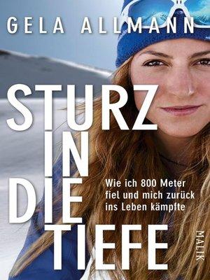 cover image of Sturz in die Tiefe