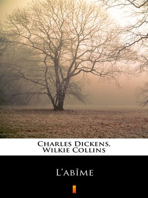 cover image of L'abîme