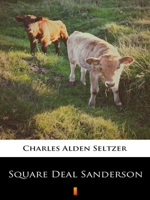 cover image of Square Deal Sanderson
