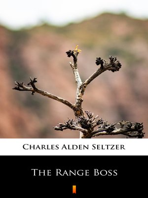 cover image of The Range Boss