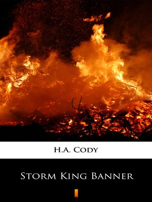 cover image of Storm King Banner