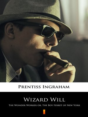 cover image of Wizard Will