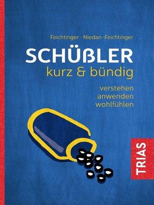 cover image of Schüßler kurz & bündig