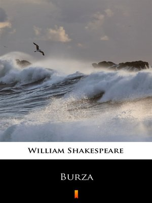 cover image of Burza