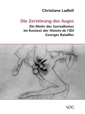 cover image of Die Zerstörung des Auges