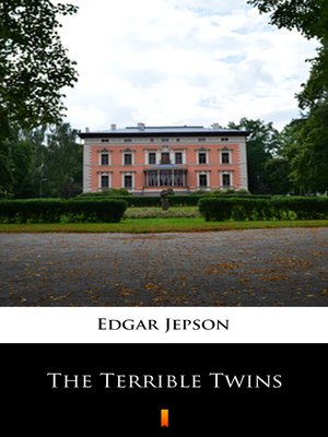 cover image of The Terrible Twins
