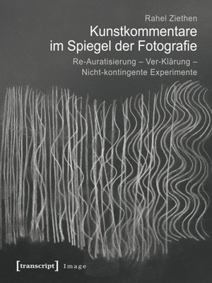 cover image of Kunstkommentare im Spiegel der Fotografie