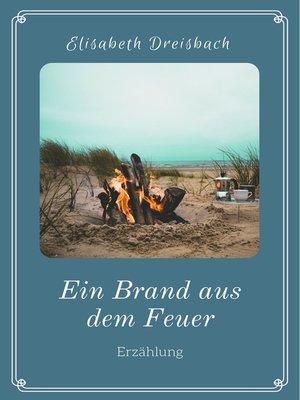 cover image of Ein Brand aus dem Feuer