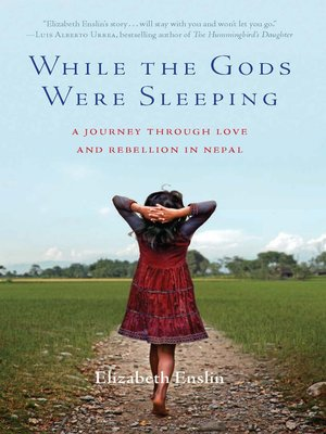 cover image of While the Gods Were Sleeping