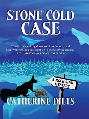 cover image of Stone Cold Case