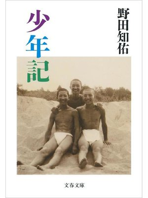 cover image of 少年記