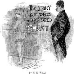 cover image of The story of the inexperienced ghost